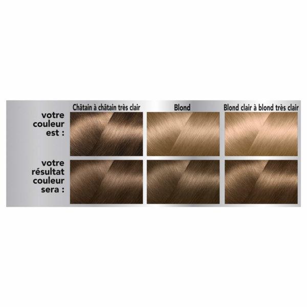 Coloration Permanente Aux Phytopigments Végétaux Blond Foncé 70